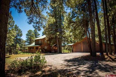 Pagosa Springs Single Family Home For Sale: 630 Coronado Circle