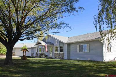 Montrose Single Family Home UC/Contingent/Call LB: 3381 Valley Way