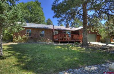 Durango Single Family Home NEW: 95 Aspen Drive