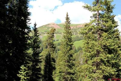 Crested Butte CO Residential Lots & Land For Sale: $89,500