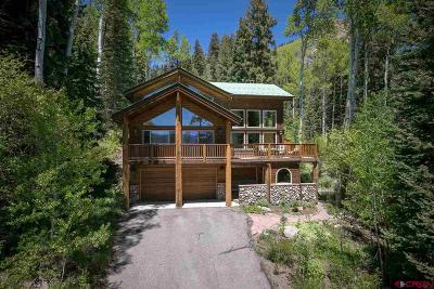 La Plata County Single Family Home For Sale: 47 Creekside