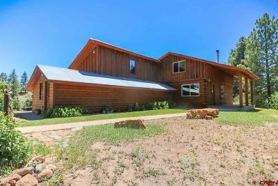 Pagosa Springs Single Family Home For Sale: 235 Ghost Elk Court