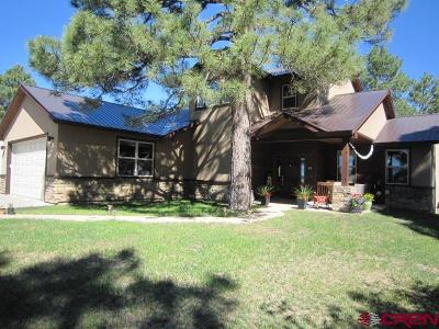Pagosa Springs Single Family Home UC/Contingent/Call LB: 56 Trap Court
