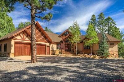Pagosa Springs Single Family Home For Sale: 290 Engleman Place