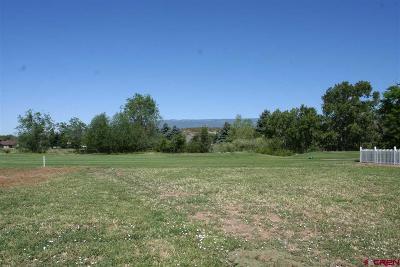 Cedaredge Residential Lots & Land For Sale: 1470 SE Deer Creek Drive