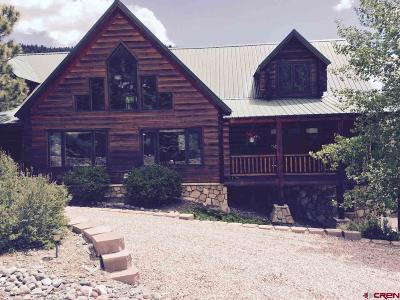 South Fork CO Single Family Home For Sale: $589,000