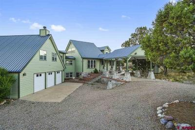 Durango Single Family Home For Sale: 190 Belle Starr
