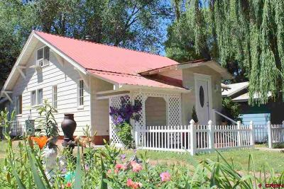 Single Family Home UC/Contingent/Call LB: 335 E Orchard Street