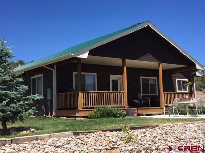 Mancos Single Family Home For Sale: 42121 Road J.75