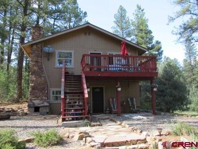 Pagosa Springs Single Family Home For Sale: 28 Simmons Drive