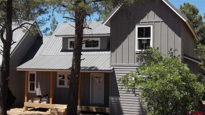 Pagosa Springs Single Family Home For Sale: 505 Monument Avenue