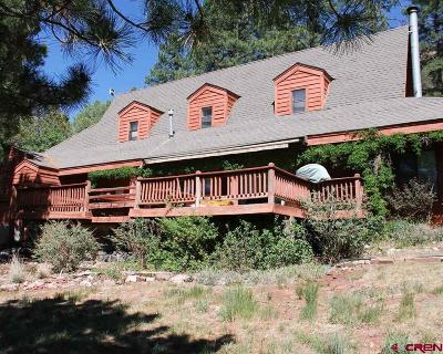 Durango Single Family Home For Sale: 6536 County Road 250