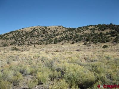 Del Norte Residential Lots & Land For Sale: 1694 Pronghorn Trail