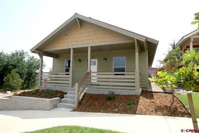 Durango Single Family Home For Sale: 515 Confluence Avenue