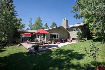 Durango Single Family Home For Sale: 703 Clovis Drive