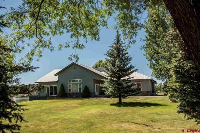 Pagosa Springs Single Family Home For Sale: 191 Northbay Cir