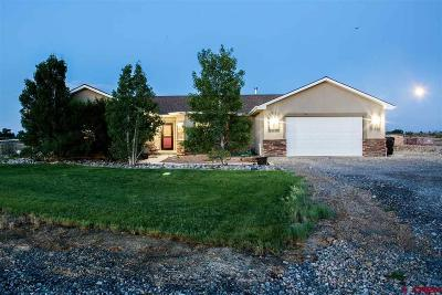 Delta CO Single Family Home For Sale: $319,900