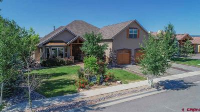 Montrose Single Family Home For Sale: 1034 San Sophia Drive