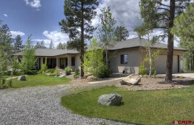 La Plata County Single Family Home For Sale: 46778 E Hwy 160