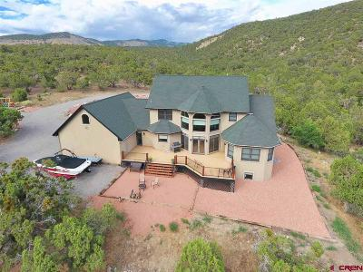 Montrose Single Family Home For Sale: 23422 7250 Road
