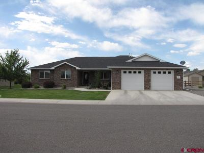 Montrose Single Family Home UC/Contingent/Call LB: 3225 Yarrow Way