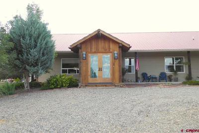 Delta CO Single Family Home For Sale: $465,000
