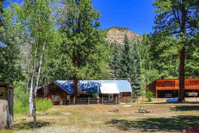 Pagosa Springs Single Family Home For Sale: 609 Cr 339