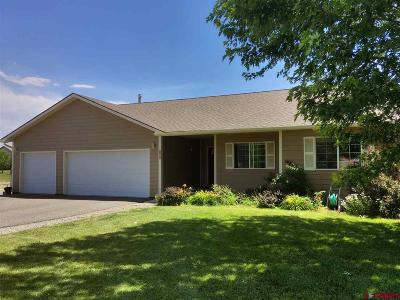 Montrose Single Family Home UC/Contingent/Call LB: 11600 Joyful Way