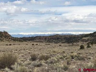 Del Norte Residential Lots & Land For Sale: 120 Stagecoach Pass