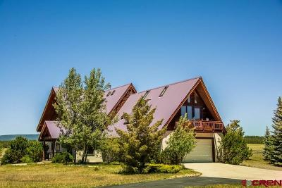 Pagosa Springs Single Family Home UC/Contingent/Call LB: 784 Northlake Avenue