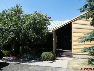 Pagosa Springs Condo/Townhouse For Sale: 247 Davis Cup Drive #4212