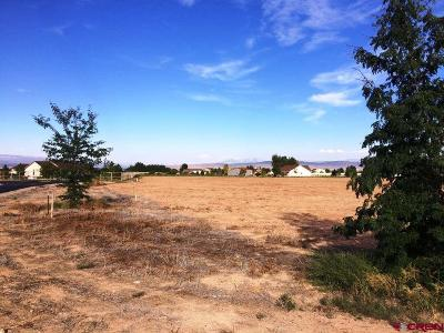 Delta Residential Lots & Land For Sale: Shilo Court