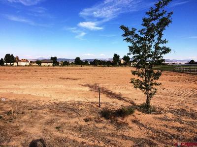 Delta Residential Lots & Land For Sale: Chantelle Lane