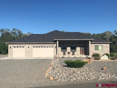 Montrose Single Family Home UC/Contingent/Call LB: 62089 Oleander Circle