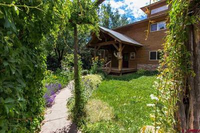 Pagosa Springs Single Family Home For Sale: 522 Cloud Cap