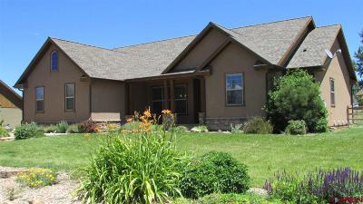 Montrose Single Family Home UC/Contingent/Call LB: 3255 Monte Vista Circle