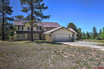 Durango Single Family Home For Sale: 255 S Elk