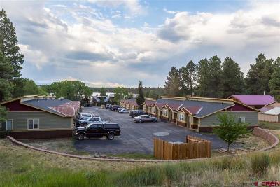Pagosa Springs Condo/Townhouse UC/Contingent/Call LB: 1158 Cloud Cap Avenue #1
