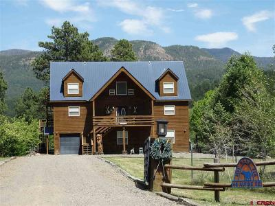 Pagosa Springs Single Family Home For Sale: 46 Alpine Drive