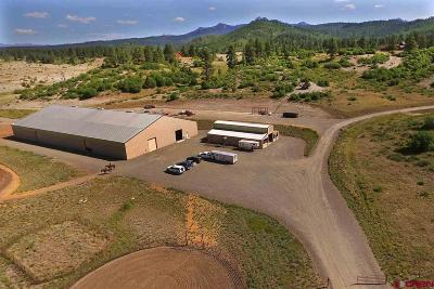 Pagosa Springs Single Family Home For Sale: 2446 Preservation Place