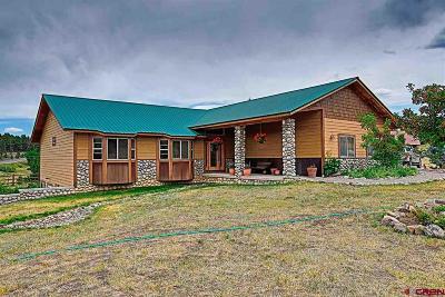 Pagosa Springs Single Family Home For Sale: 34 Capitan Circle