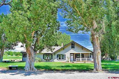 Delta CO Single Family Home For Sale: $349,900
