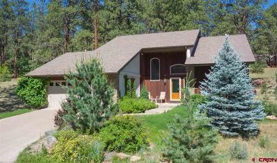 Durango Single Family Home For Sale: 491 Hogan Circle