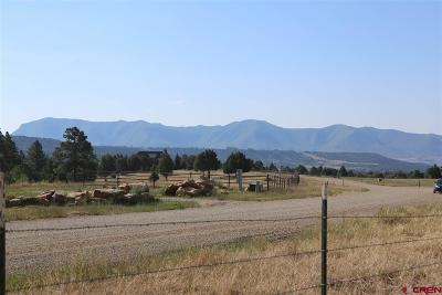 Mancos Single Family Home For Sale: 40531 Road M.5