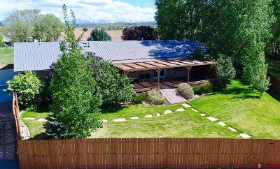 Montrose Single Family Home UC/Contingent/Call LB: 61393 Niagara Road