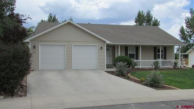 Montrose Single Family Home UC/Contingent/Call LB: 2116 Patriot Court