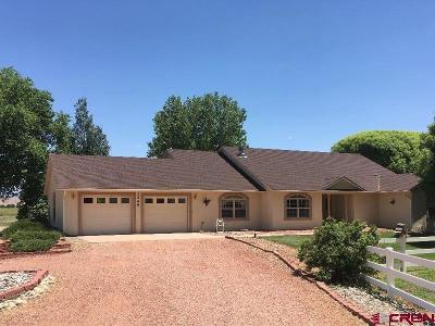 Delta CO Single Family Home UC/Contingent/Call LB: $348,000