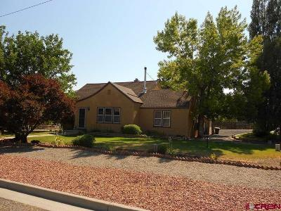 Delta CO Single Family Home For Sale: $206,000