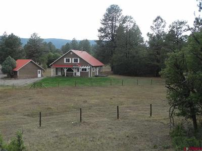 Pagosa Springs Single Family Home For Sale: 1414 Buttress Avenue