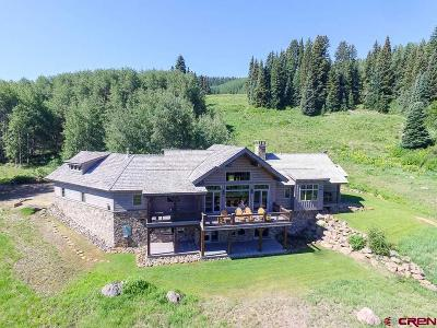 Crested Butte Single Family Home For Sale: 1610 Red Mountain Ranch Road